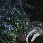 Badger in Bluebells by Greg Stedman