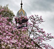 Peek Chapel With Magnolias by Susie Peek