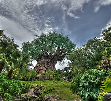 Tree of Life by AtDisneyAgain