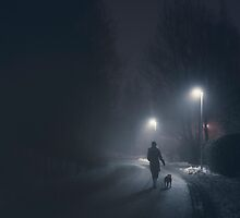 Night Walk by Mikko Lagerstedt