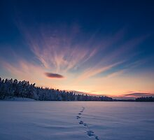 Tracks in the Snow by Mikko Lagerstedt