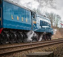 Bittern Heads South out of Appleby Railway Station by Jan Fialkowski