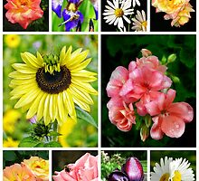 a floral collage by BBrightman