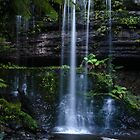 Russell Falls by sally-todd