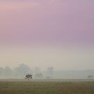 Misty pink by Antionette