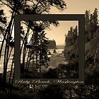 ruby beach, wa, usa old school (2x square) by dedmanshootn