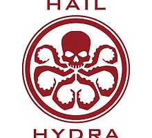 HAIL HYDRA by amirshazrin