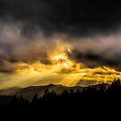 Evening Glow  by JKKimball
