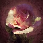 Cosmic Rose by RC deWinter