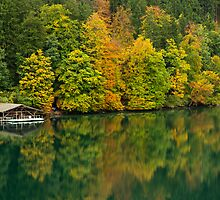 The Alpsee in Fall by MichaelJP