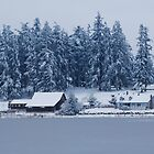 Snowy Lakeside Farm by Tori Snow