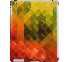 Retro 3d Pattern iPad Case/Skin