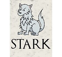 Game of Thrones - House Stark Sigil Photographic Print