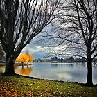 Winter Colour, Lake Wendouree by Mitchell Harris