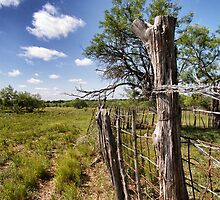 Fence Post by donnlawler