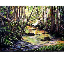 Blue Mountains Creek Photographic Print