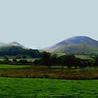 Loweswater Fells Panorama by GeorgeOne