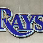 Tampa Bay Rays Logo, Florida by Chris L Smith