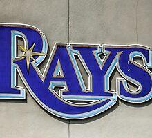 Tampa Bay Rays Logo, Florida by Chris L Smith