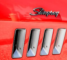 Red Corvette Stingray Gills by Chris L Smith