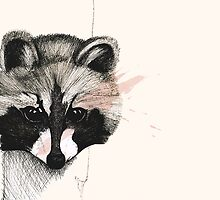 The Raccoon by SFSillustration