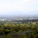 The view from Kirstenbosch by Antionette