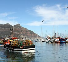 Houtbaai - Hout Bay  by Antionette