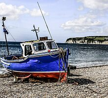 Shingle Beach of Seaton by Chris L Smith