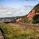 Dawlish Coast by Chris L Smith