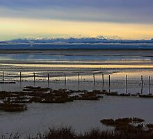 Fence, mud and mountains by Duncan Cunningham