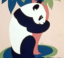 Panda and Bamboo, Brookfield Zoo by Vintagee