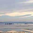 Wilson Inlet, Denmark 8-4-2014 by pennyswork