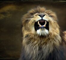 The lion roars by missmoneypenny