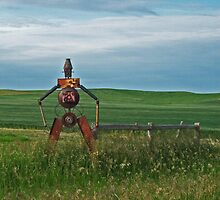 Tin Man on the Prairie by dkpenman