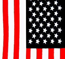 America Flag  by Timothyoleary