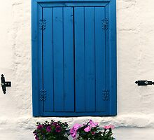 blue window by gzmguvenc89