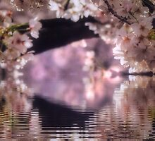 A tunnel of Spring by DerekEntwistle