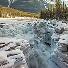 Athabasca Falls by Nordic-Photo