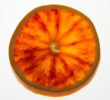 Orange Slice by giacomocheccu