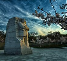 MLK Memorial Cherry Blossoms by mkurec