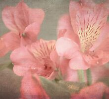 The Beauty of Blossoms by KJ DeWaal