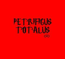 Petrificus Totalus charm - Harry Potter by galatria