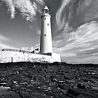 St Mary's Lighthouse - Whitely Bay by David  Parkin