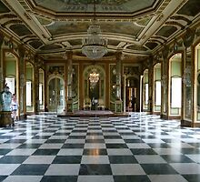 Hall of Ambassadors, Queluz National Palace by Trish Meyer