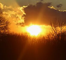 Heavenly Sunset by Gilda Axelrod