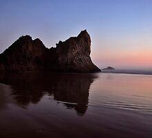 ARCADIA BEACH by Alexphotospdx