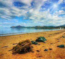 Llyn Peninsula - Morfa Nefyn by Ian Mitchell