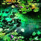 Lily Pond by mimulux