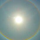Sun Halo  by Shellie Phipps