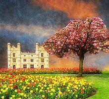 An English Garden by Christine Lake